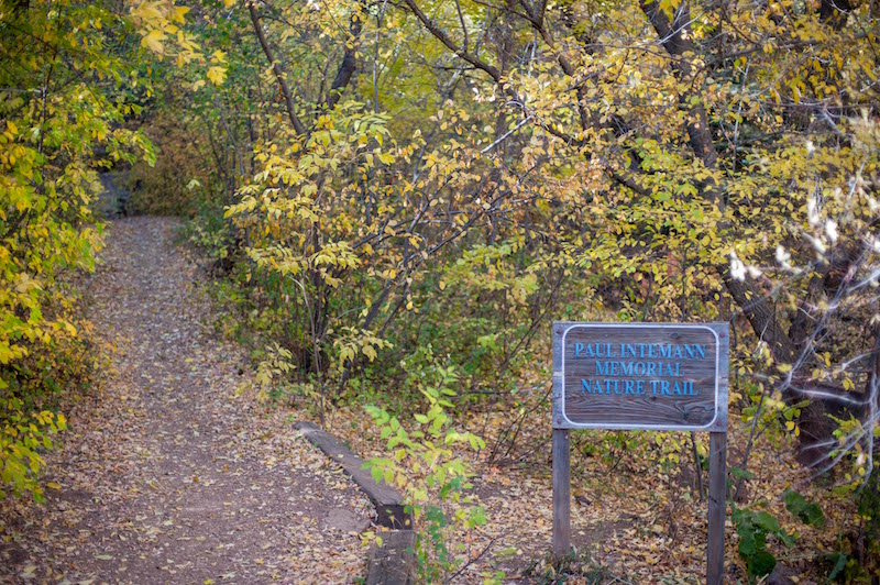 paul intemann memorial nature trail leads up to red mountain