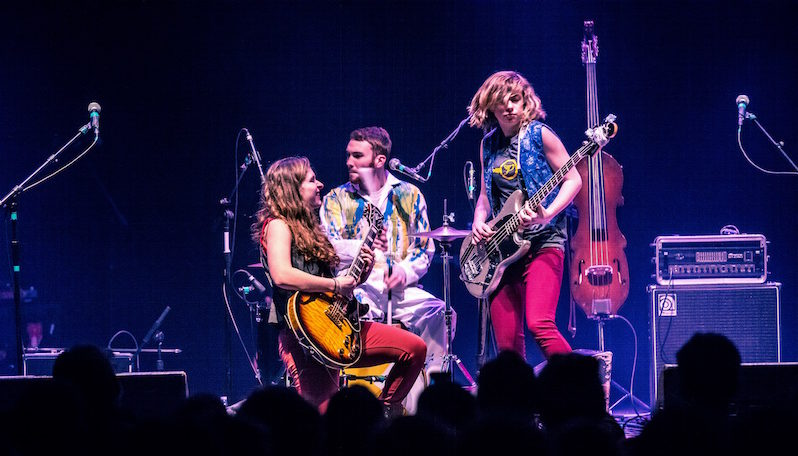accidentals coming to meadowgrass