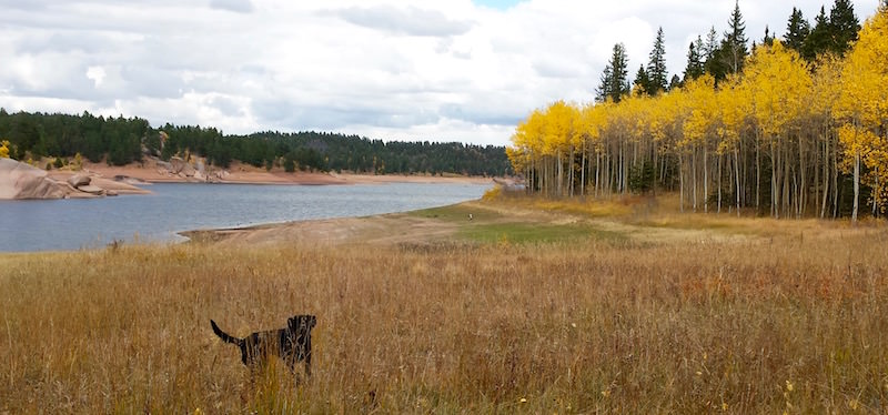 fall color hikes rainbow gulch and rampart range reservoir