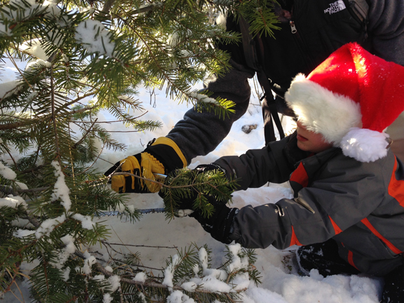 Holiday Traditions: Christmas Tree Cutting