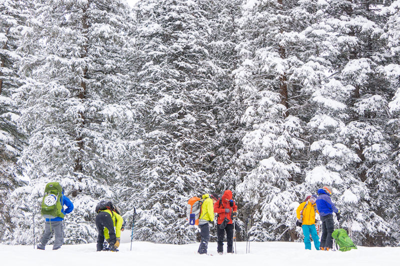 backcountry skiers on hut trip
