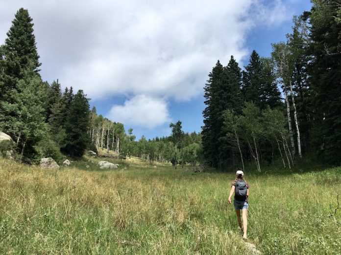 hiker in meadows on top of cheyenne mountain
