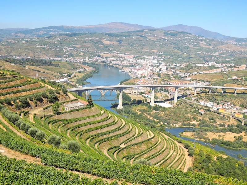 Aerial view of a Portugal Vineyard.