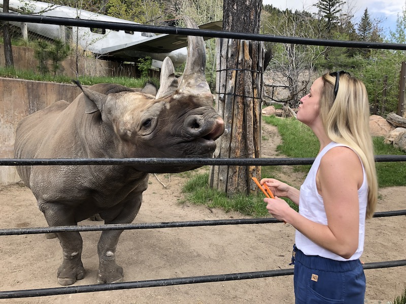 Gift experiences overnight stay at Cheyenne Mountain Zoo