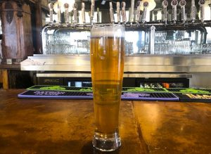 sampling Phantom Canyon's Alpenglow Hefeweizen after brewing