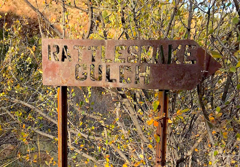 Rattlesnake Gulch trail sign on the descent of the Ute Pass Trail