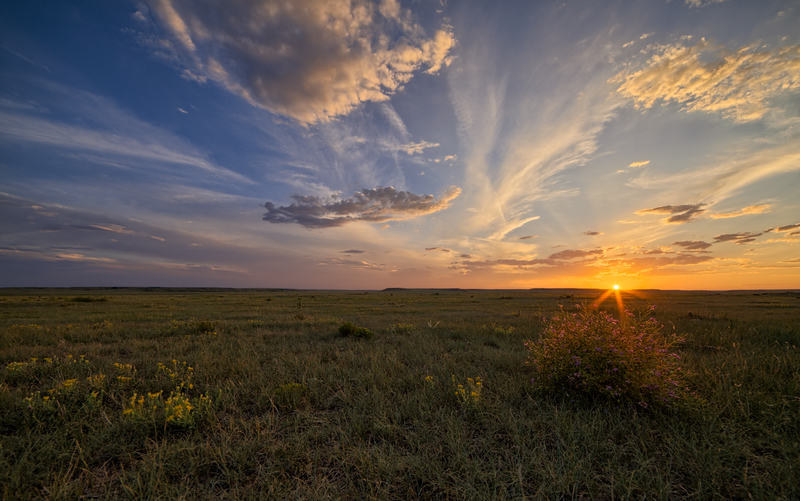 sunset of the prairie outdoors
